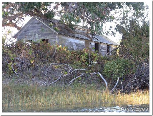 islandmilkhouse