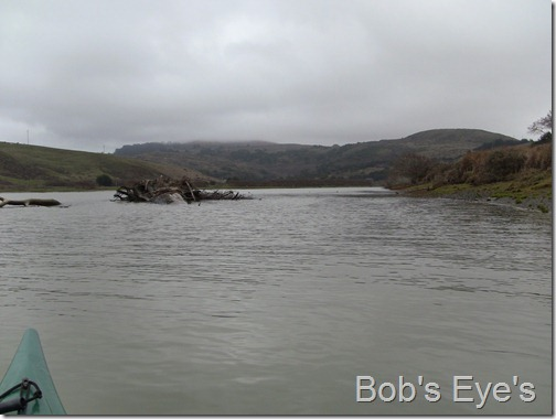 Jenner river view 1