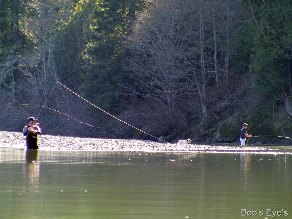 Steelhead fishing on the russian river ca bob 39 s eyes for Steelhead fishing california