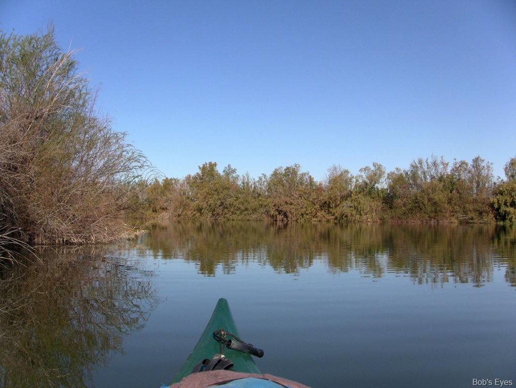 Kayaking Growler Az Pond The Best Bob 39 S Eyes