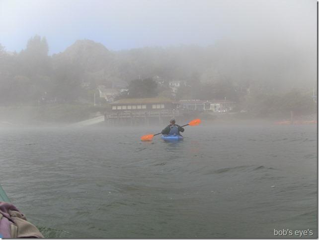 foggeding3