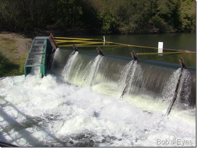 damflow