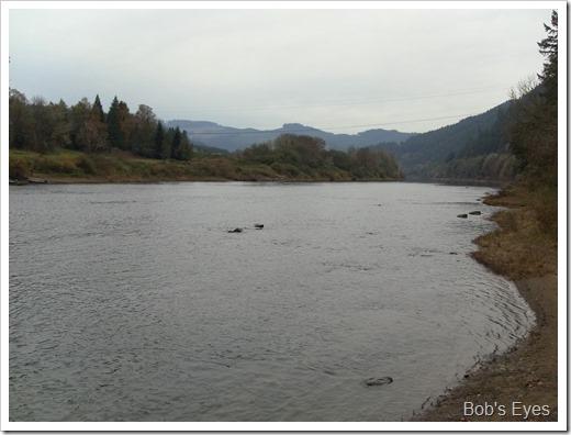 umpquariver