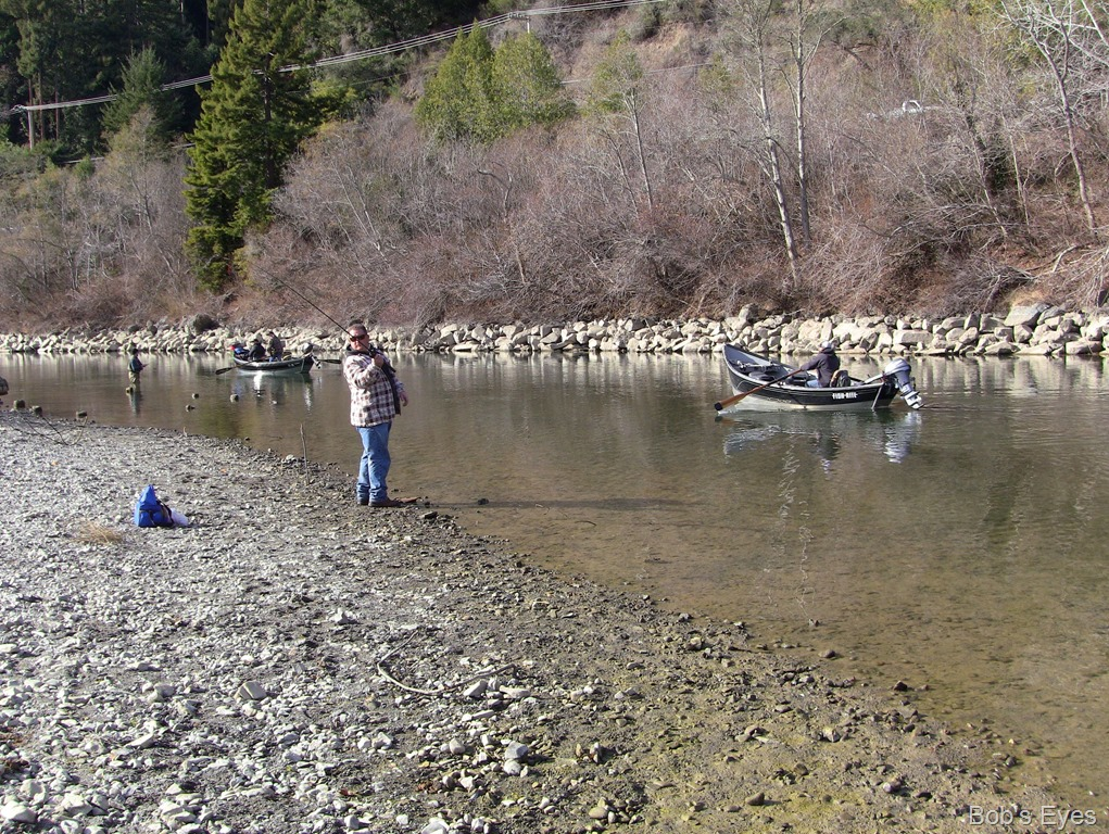 More steelhead fishing on the russian river bob 39 s eyes for Russian river fishing