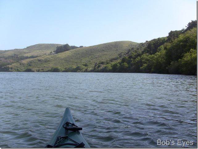 paddleup