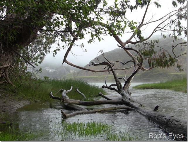 rainchannel