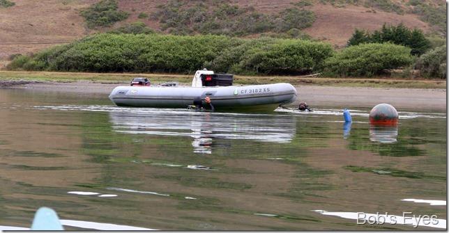 bioboat2