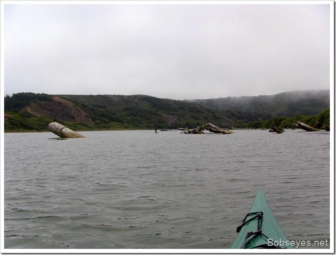 sealhaven