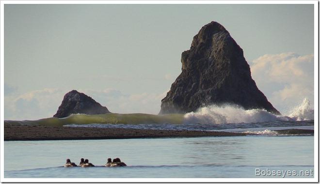 wavesmouth