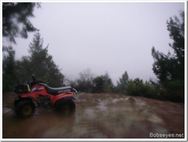 rainquad